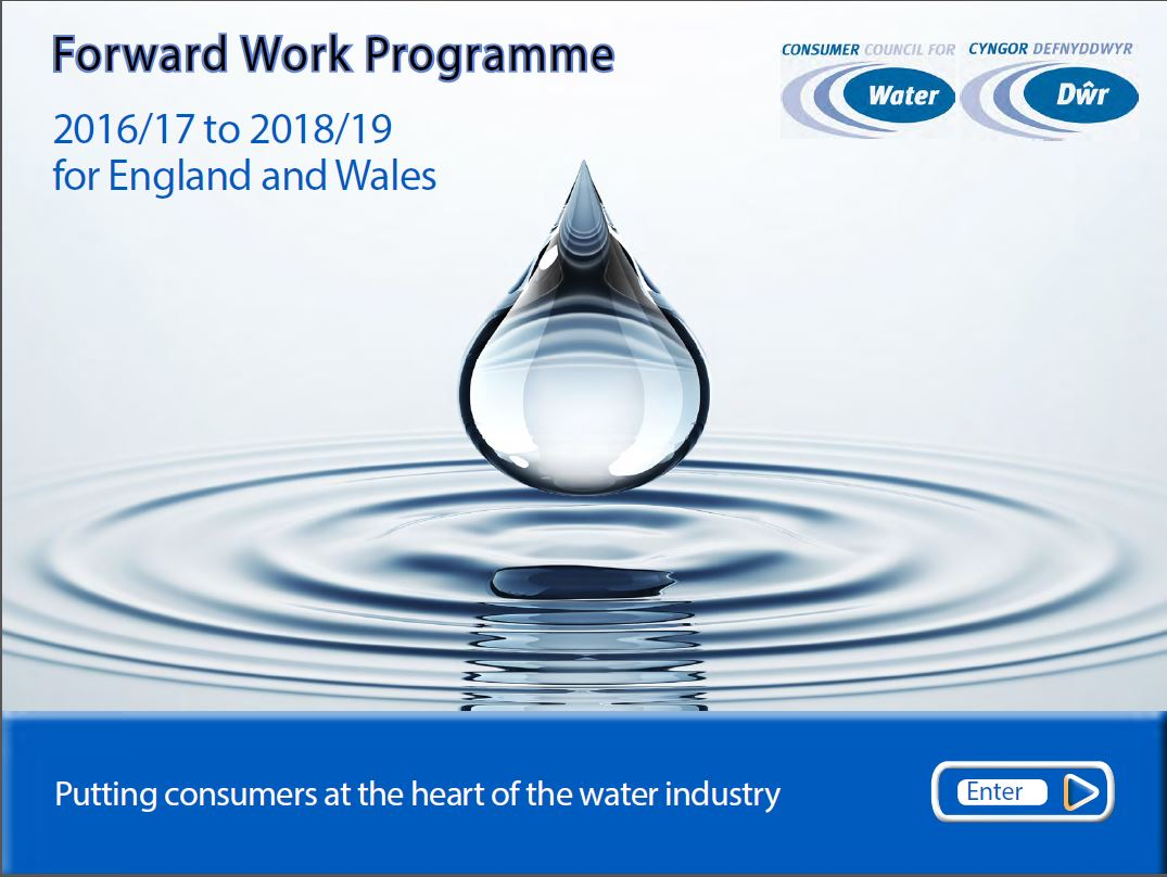 Front cover of Forward Work Programme 2016