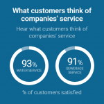 infogrpahic of what customers think of companies service