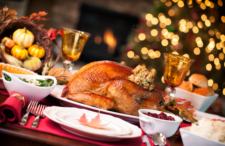 Thanksgiving turkey dinner in front of the fireplace and Christmas tree