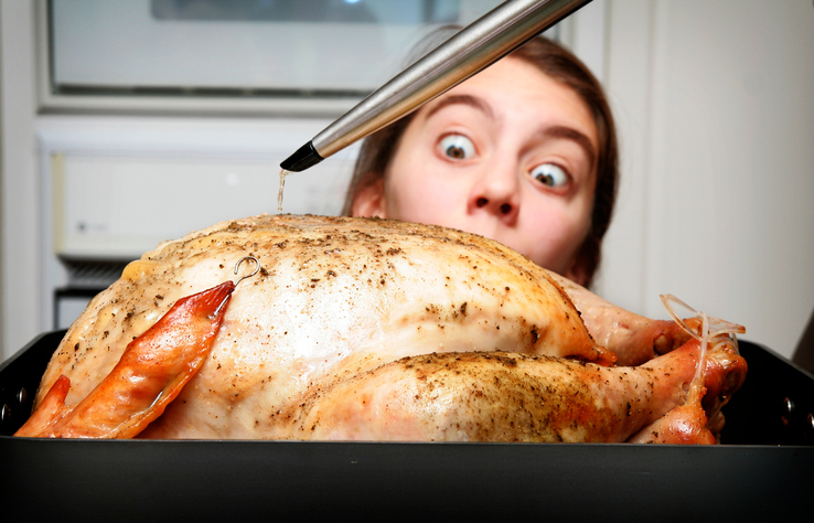 A turkey being basted during the cooking process. A young girl watches with hungry eyes.