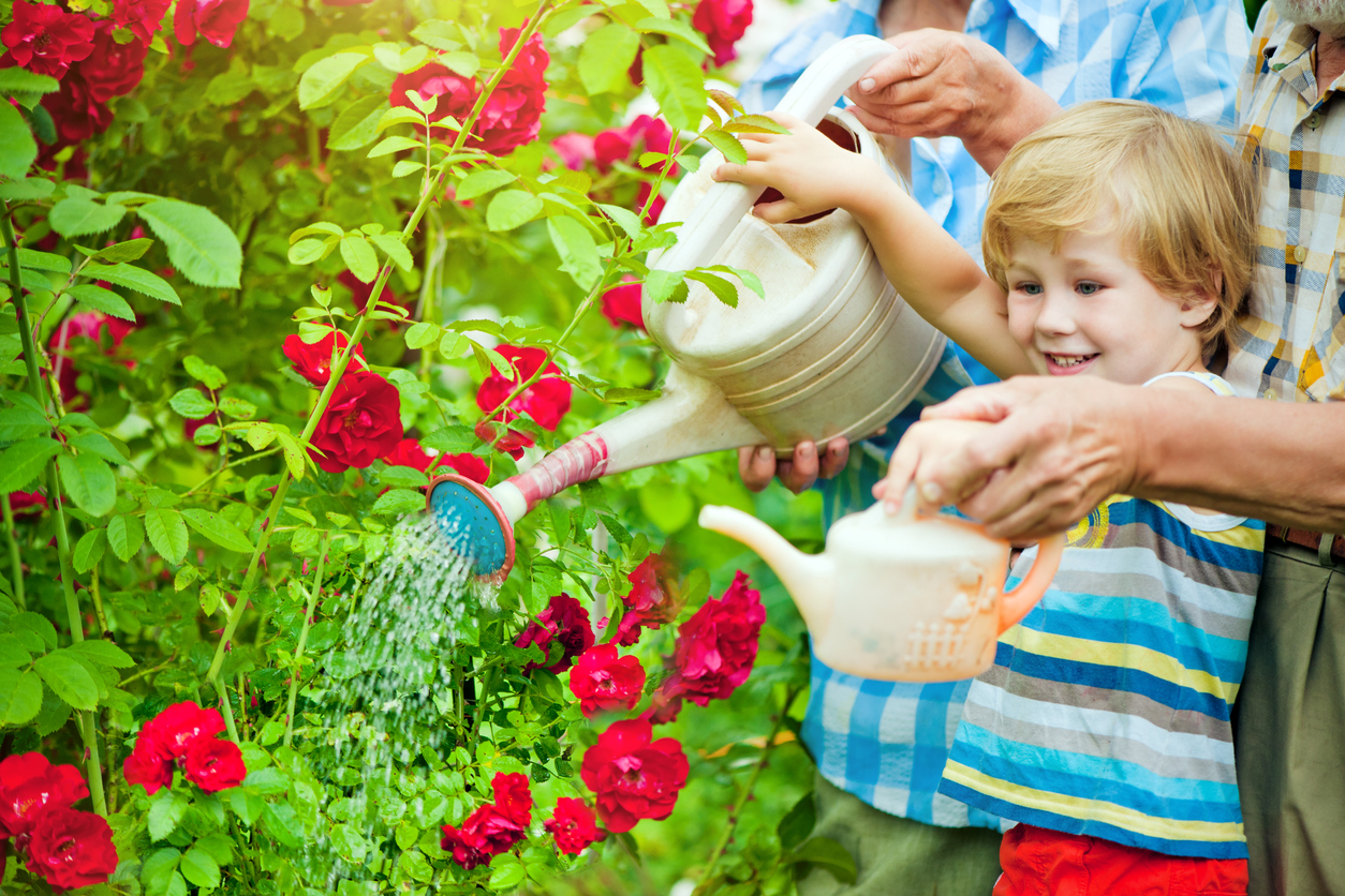 Happy family watering flowers